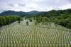 Presidentja Osmani: Askush më mirë se Kosova nuk e njeh dhimbjen e Srebrenicës