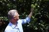 """Presidenti vizitoi plantacionet me pemë dhe fabrikën e lëngjeve """"Frutomania"""""""