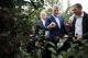 """Presidenti Thaçi në manifestimin """"Dita e mollës"""": Investimet në bujqësi po i sjellin rezultatet e pritshme"""