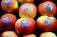 """President Thaçi at the manifestation """"Apple Day"""": Investments in agriculture are bringing the expected results"""