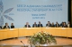 President Jahjaga's speech at the Summit of the South-East European Cooperation Process in Tirana